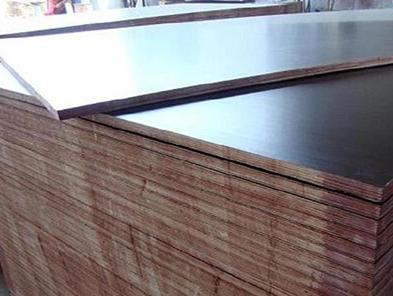 专业建筑模板